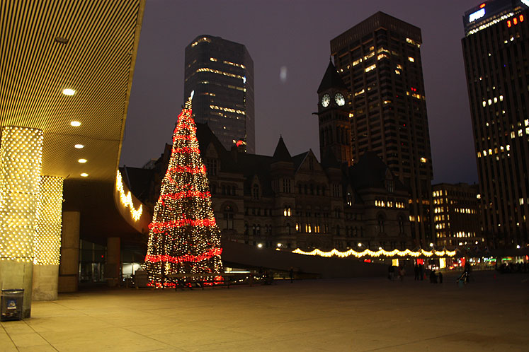 World Travel Photos :: Christmas :: Toronto. A Christmas Tree in front of the City Hall