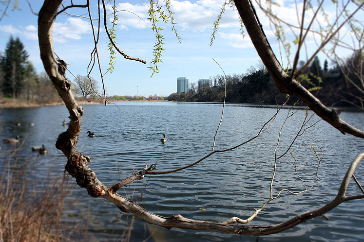World Travel Photos :: Interesting perspectives :: A view on the city from High Park