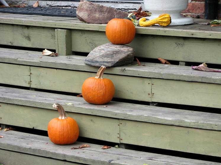 Toronto Photos :: Kensington market :: Kensington Market - pumpkins on the stairs