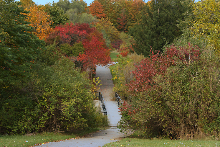 World Travel Photos :: Fall views :: Toronto. North York. Fall - G Ross Lord Park