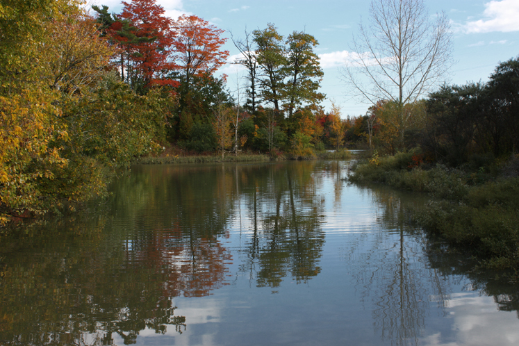 World Travel Photos :: Reflections :: Toronto. North York. Fall - G Ross Lord Park