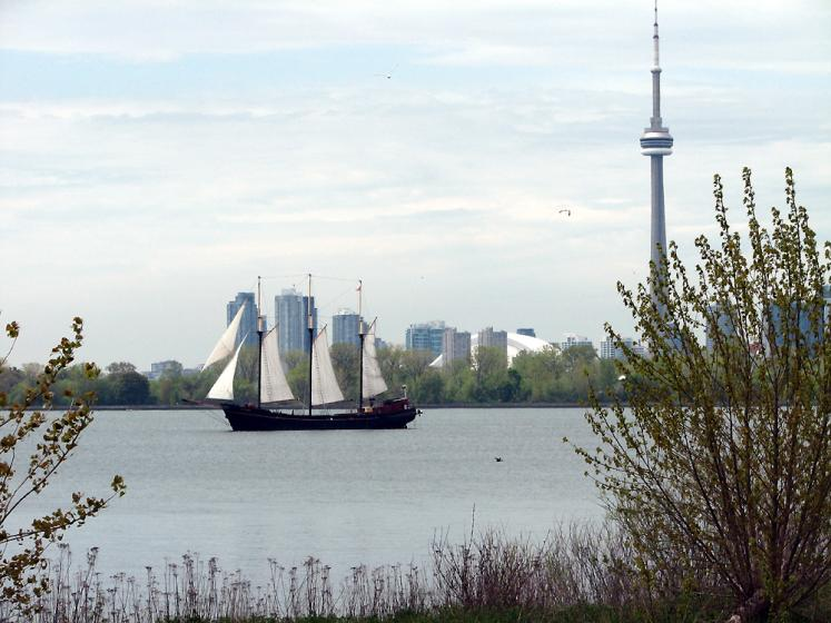 Toronto Photos :: CN Tower :: View on CN Tower from Tommy Thompson Park